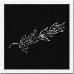 Гравировка цветов ИЦ014