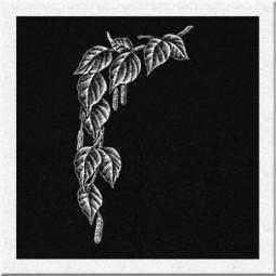 Гравировка виньетки ИВ017