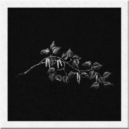Гравировка цветов ИЦ012