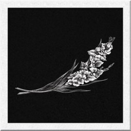 Гравировка цветов ИЦ009